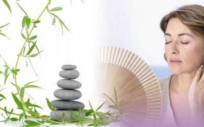 Menopause and Reflexology